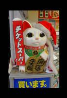 Japanese cat 1 by Osiris-NihonWa
