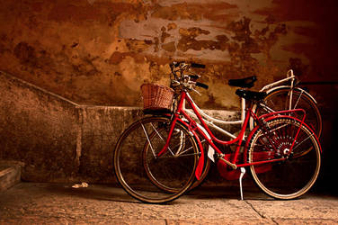 Bicycles in Verona by efedrina
