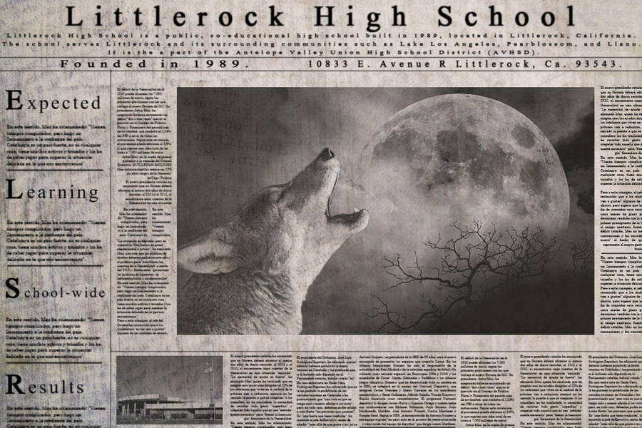 Newspaper. by kdtirado