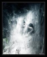 In The Crystalis Web by prelandra
