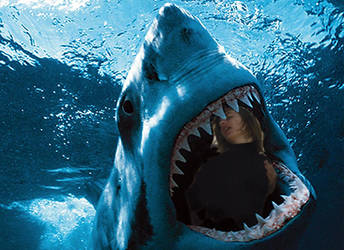 Kyle Gets Eaten By A Shark by LiebeFlustern