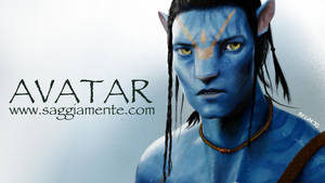 Avatar by Dario1crisafulli