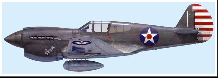 Curtiss P-40 by Jimbowyrick1
