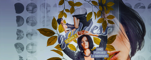 Jaimie Alexander Signature by new-americana