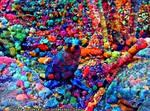 M:Dream Seal 4/9/17 - YumYum Cereal Powder Forest. by MatthewandKatlayn