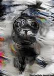 Dream Seal 7/1/17 - Very High Quality Month by MatthewandKatlayn
