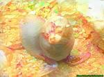 Dream Seal 7/27/17 - Chilly Weather Memories by MatthewandKatlayn