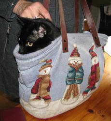 Getaway tote by CatsWire