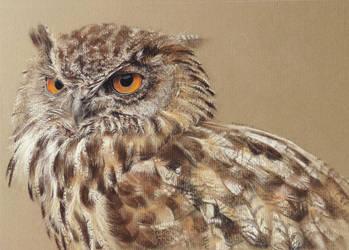 Eeeny weenie eagle owl by Blue-Goo