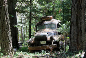 If a tree falls on a Power Wagon, by finhead4ever