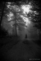 Rusty fog- B and W by InKibus