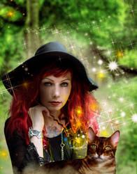 Magic Companions by chevronguy