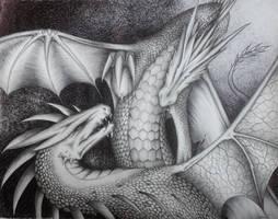 Dragon Fight by Saraais