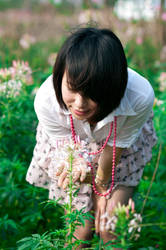 flowers blossom2 by xiaochi