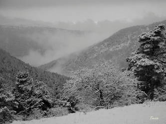 Winter 1 by Tircisia