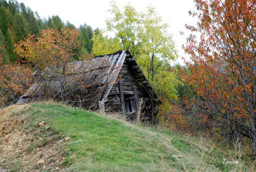Old house by Tircisia