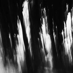 the haunted forest by PsycheAnamnesis