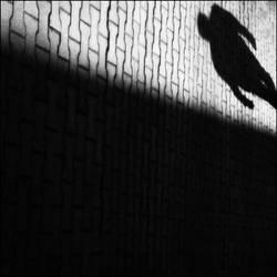 stalker by PsycheAnamnesis