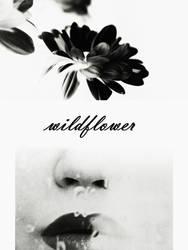 instead of eyes, plant me wildflowers by PsycheAnamnesis