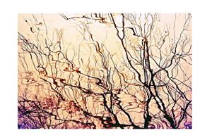 sedated memory by PsycheAnamnesis