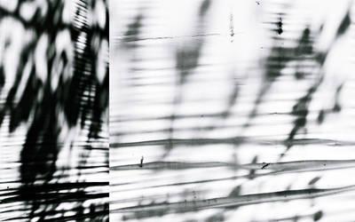 digital phantoms reshaped by PsycheAnamnesis