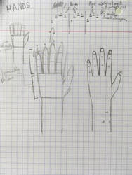 Study 1 : Hands by TheMagnificentDemete