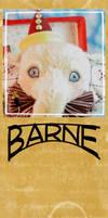 Barne 2 by montybearkins