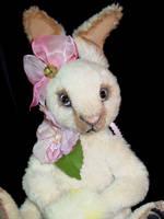 Cynthia Bunny Face by montybearkins