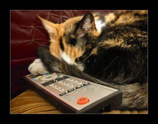Susie- TV addicted by Alvia