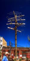 Panorama 3667 hdr pregamma 1 mantiuk06 contrast ma by bruhinb