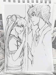 Seiya+Serena: We are from different worlds by Beloved-Star