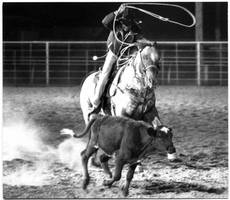 rodeo by neshort