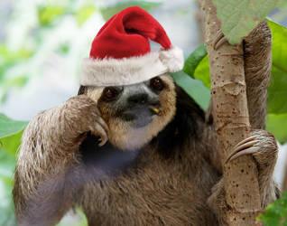 Cighat Santa Sloth by dox111