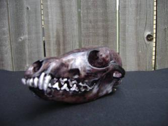 BlackSkull2 by Heartion