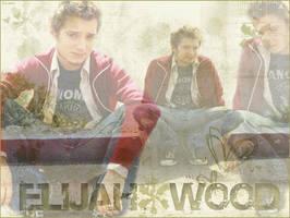 Elijah Wood by mordorqueen
