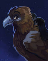 Nighttime Eagle by OrcaOwl