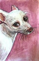 Dog Watercolor by OrcaOwl