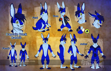 Captain Buck Rabbit Reference Sheet by bluekoinu