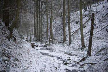 Winterzauber 2 Zweibruecken by TiTan666