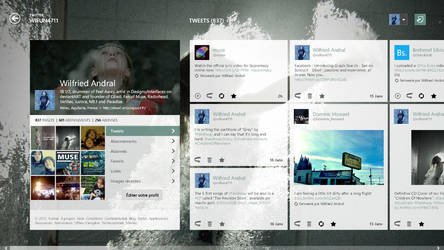 Twitter Metro Concept - Profile View with header by wifun2012