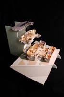 ARCH 383 Presentation Model by rednotdead