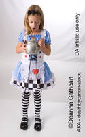 Alice 3 by deathbycanon-stock