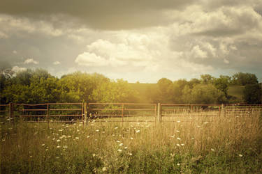 Pasture Fence Premade 1 by deathbycanon-stock