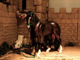 Bouncer Pony by dyb