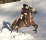 Its a Snowy ride by dyb