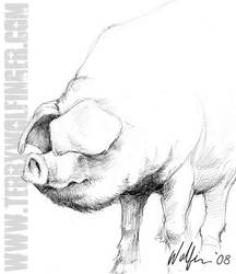 Oink by WolfieArtGuy