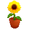Sunflower 3 by Grumppuppi
