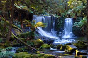 Tasmanian Waterfall by ThatScalieThing