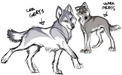 Wolf concepts... by shoomlah