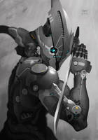 -- Cymurai 11 -- by yvanquinet